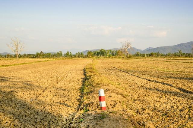 何も植えられていない農地